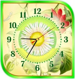 Купить Часы настенные кварцевые в кабинет биологии 300*320 мм в Беларуси от 16.50 BYN