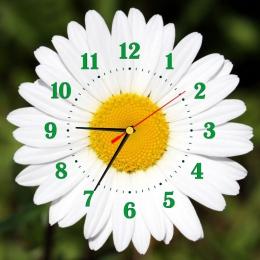 Купить Часы настенные кварцевые в стиле группы Ромашка на зеленом фоне 320*320 мм в Беларуси от 17.50 BYN