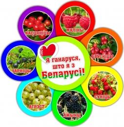 Купить Фигурный стенд Я ганаруся, што я з Беларусi! ягоды 490*510мм в Беларуси от 30.00 BYN