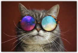 Купить Картина на холсте Кот в космических очках в Беларуси от 12.00 BYN