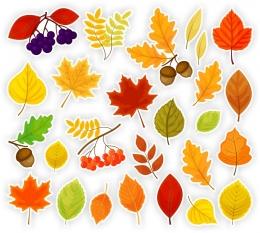 Купить Комплект декоративных наклеек Осенние листочки 468*460мм в Беларуси от 10.00 BYN