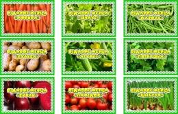 Купить Комплект табличек для экологической тропы на белорусском языке 9 шт., 190*130мм в Беларуси от 24.00 BYN