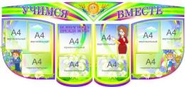 Купить Композиция Учимся Вместе в радужных тонах с васильками в Беларуси от 224.00 BYN