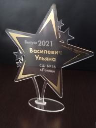 Купить Награда Звезда с гравировкой и зеркальной плёнкой 150*170 мм в Беларуси от 15.00 BYN