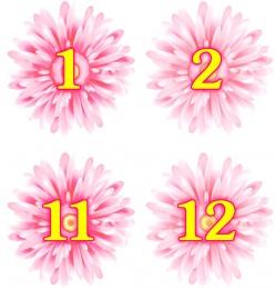 Купить Наклейки Маргаритки с нумерацией 30 шт. 62*62 мм в Беларуси от 6.00 BYN