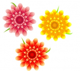 Купить Наклейки на стенды Цветочки 21шт. 60*60мм, 80*80мм в Беларуси от 7.00 BYN