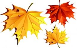 Купить Наклейки на стенды Кленовые листья 12 шт. в Беларуси от 14.00 BYN
