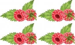 Купить Односторонний фигурный элемент Малинка для оформления группы детского сада 24 шт. 130*80мм в Беларуси от 39.32 BYN