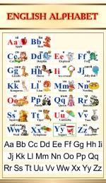 Купить Стенд Английский Алфавит с картинками в золотисто-бежевых тонах с прописными буквами 500*850мм в Беларуси от 46.00 BYN