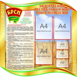 Купить Стенд Белорусский республиканский союз молодежи 1000*1000 мм в Беларуси от 128.80 BYN