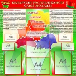 Купить Стенд БРСМ Беларускi рэспубліканскi саюз моладзi с картой 1000*1000мм в Беларуси от 123.00 BYN