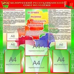 Купить Стенд БРСМ на русском языке с картой 1000*1000 мм в Беларуси от 122.00 BYN