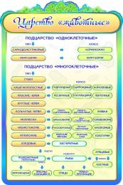Купить Стенд  Царство Животные в кабинет биологии 600*900мм в Беларуси от 65.00 BYN