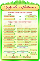 Купить Стенд  Царство Животные в золотисто-зеленых тонах для кабинета биологии 600*900мм в Беларуси от 65.00 BYN