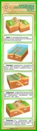 Купить Стенд Движения литосферных плит в золотисто-зелёных тонах 400*1400 мм в Беларуси от 66.00 BYN