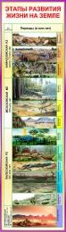 Купить Стенд Этапы развития жизни на Земле 390*1380 мм в Беларуси от 59.00 BYN