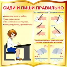 Купить Стенд фигурный Сиди и пиши правильно в золотисто-коричневых тонах 550*550 мм в Беларуси от 34.00 BYN