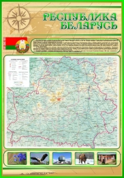 Купить Стенд Физическая карта Беларуси в золотисто-зелёных тонах 700*1000 мм в Беларуси от 83.00 BYN