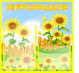 Купить Стенд Информация для группы Подсолнухи  530*500мм в Беларуси от 33.90 BYN