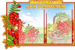 Купить Стенд Информация для родителей группа Рябинка на 2 кармана А4 640*430мм в Беларуси от 38.00 BYN