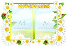 Купить Стенд Информация  группа Ромашка на 2 кармана А4 фигурный 640*440 мм в Беларуси от 37.00 BYN