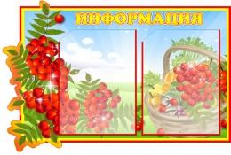 Купить Стенд Информация группа Рябинка 660*450 мм в Беларуси от 39.00 BYN
