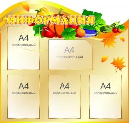Купить Стенд Информация в золотистых тонах в столовую 900*860 мм в Беларуси от 106.50 BYN