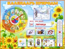 Купить Стенд Календарь природы группа Подсолнухи 800*600 мм в Беларуси от 71.50 BYN