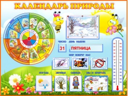 Купить Стенд Календарь Природы, развивающий в группу Пчёлка 800*600мм в Беларуси от 74.50 BYN
