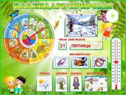 Купить Стенд Календарь Природы, развивающий в зелёных тонах 800*600мм в Беларуси от 74.50 BYN
