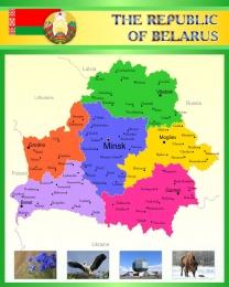Купить Стенд Карта Беларуси для кабинета английского в зеленых тонах 600*750 в Беларуси от 51.00 BYN
