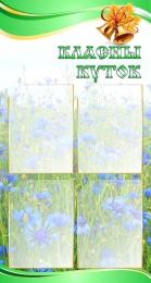 Купить Стенд  Класны куток в зеленых тонах с васильками 520*970мм в Беларуси от 65.00 BYN