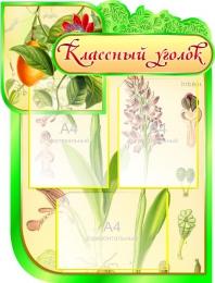 Купить Стенд Классный уголок для кабинета Биологии на 3 кармана 600*790мм в Беларуси от 61.50 BYN