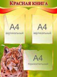 Купить Стенд Красная книга на 3 кармана 600*800 мм в Беларуси от 59.50 BYN