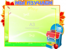 Купить Стенд  Мы изучаем на карман А3 600*450мм в Беларуси от 38.00 BYN
