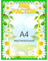 Купить Стенд Мы растем для группы Ромашка с карманом А4 360*450 мм в Беларуси от 20.50 BYN