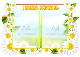 Купить Стенд Наша жизнь  группа Ромашка на 2 кармана А4 фигурный  650*470 мм в Беларуси от 42.00 BYN