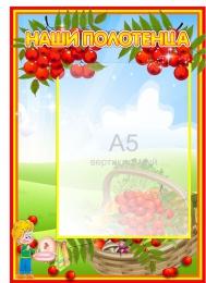Купить Стенд Наши полотенца для группы Рябинка 230*340мм в Беларуси от 10.40 BYN