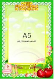 Купить Стенд Наши полотенца и расчески для группы Вишенка с карманом А5 в детский сад 230*340мм в Беларуси от 10.40 BYN
