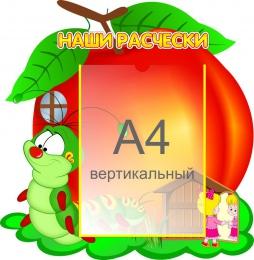 Купить Стенд Наши расчёски группа Гусеничка А4 450*460 мм в Беларуси от 26.50 BYN