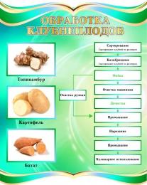 Купить Стенд Обработка клубнеплодов в бирюзовых тонах 690*860мм в Беларуси от 68.00 BYN