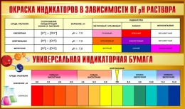 Купить Стенд Окраска индикаторов в зависимости от pH раствора 1020*600мм в Беларуси от 70.00 BYN