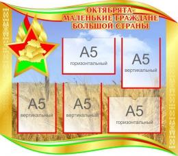 Купить Стенд Октябрята- маленькие граждане большой страны 750*660мм в Беларуси от 67.00 BYN