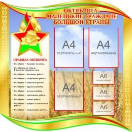 Купить Стенд Октябрята - маленькие граждане большой страны 1000*1000 мм в Беларуси от 128.80 BYN