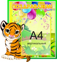 Купить Стенд Поздравляем!  группа Джунгли, Тигрята  с карманом А4 430*470мм в Беларуси от 26.50 BYN