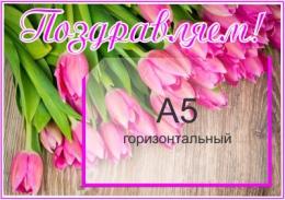 Купить Стенд Поздравляем с А5 горизонтальным карманом 340*240мм в Беларуси от 10.40 BYN