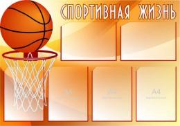 Купить Стенд Спортивная жизнь - Баскетбол 1000*700 мм в Беларуси от 100.00 BYN