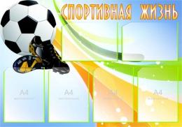 Купить Стенд Спортивная жизнь - Футбол 1000*700 мм в Беларуси от 95.00 BYN
