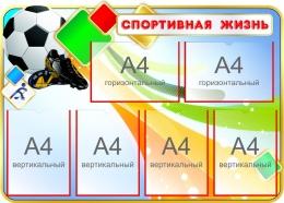 Купить Стенд Спортивная жизнь с мячом 1000*710 мм в Беларуси от 96.00 BYN