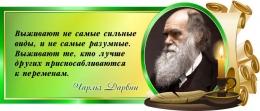Купить Стенд Свиток с цитатой Чарльза Дарвина в зелёных тонах 720*300 мм в Беларуси от 25.00 BYN